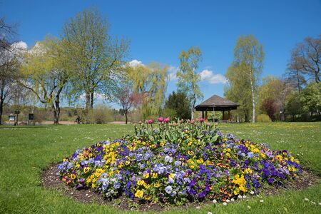 violas: spa garden tegernsee with beautiful flowerbed, colorful tulips and violas Stock Photo
