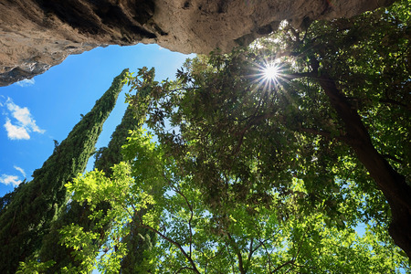 rock bottom: view from bottom up to overhanging rock face and tree crowns with bright sunshine