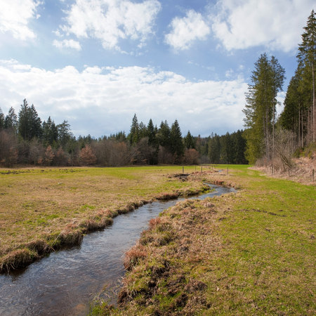 meandering: idyllic valley with meandering brook, bavarian wilderness Stock Photo