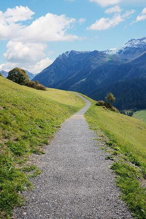 s curve: Idyllic footpath from Klosters to Monbiel, Swiss Alps Prättigau