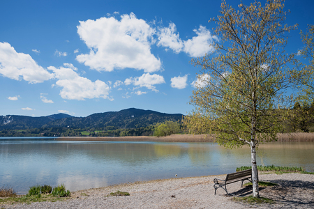 recreational area lake tegernsee, peaceful place with bench, springtime landscape bavaria