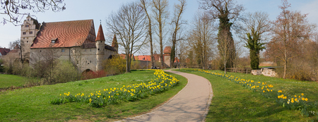 famous historical idyllic town dinkelsbühl, prettiest old town of germany, springtime park with narcissus flowerbeds