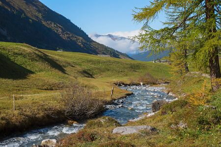 little brook in the swiss alps, landscape sertig valley in autumnal colors