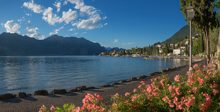 beautiful malcesine lakeside promenade with blooming rose flowerbed and view to the old town