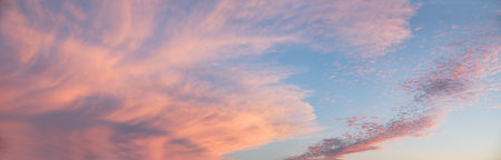 cirrus: beautiful sunset sky with illuminated fleecy and cirrus clouds pink and blue, big size format