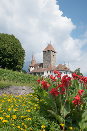 pictorial medieval castle at spiez town, tourist landmark at the bernese oberland. Framed with colorful flowers, vertical format Редакционное