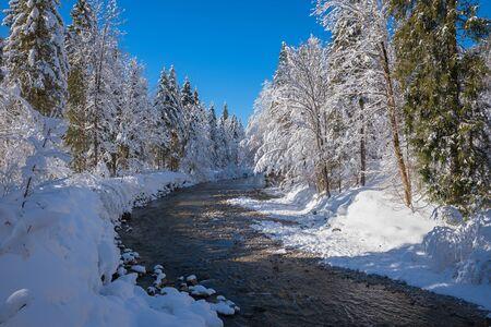 dreamy snowbound winter wonderland Weissach river near Kreuth, landscape bavarian alps Stock Photo