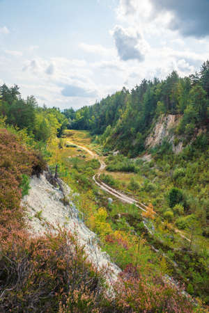 nature preserve Grosser Pfahl, near Viechtach, bavarian forest. view to valley of the stone quarry 版權商用圖片 - 156648744