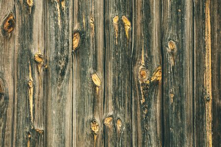 Old wood texture background with planks and rustic nails.
