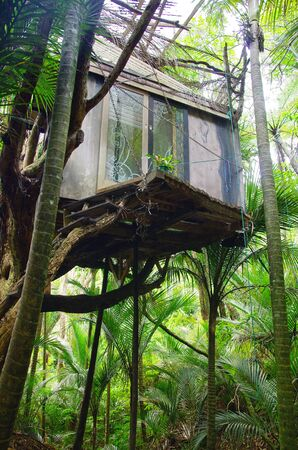 Amazing treehouse in the middle of the jungle. Living on the tree concept. Alternative living. Stock fotó