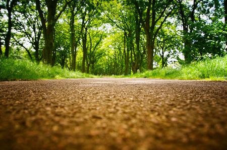 Nahaufnahme des Weges im Park . Konzentriert sich auf den Boden . Verschwommene Bäume im Hintergrund Standard-Bild - 91373147