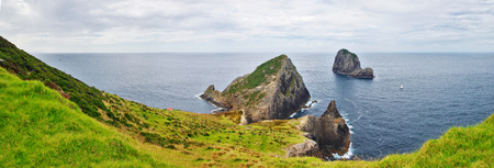 View of amazing nature in New Zealand. Green grass, blue ocean and cloudy  sky in the background. Cape Brett track, Bay of Islands. Standard-Bild - 95397249