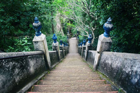 An old stairs in the forest. Stairways to buddhist temple in Sri Lanka.