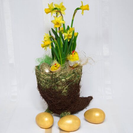 Easter decoration  Flowers, golden eggs and chickens  Stock Photo