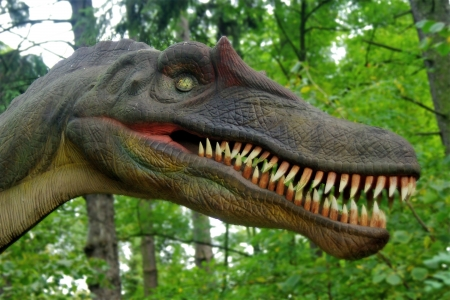 Dinosaur head in a forest - prehistoric era  Stock Photo - 18876740