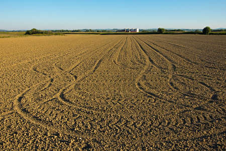 Plowed and sown field at sunset  Stock Photo