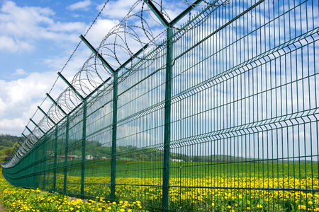 Barbed fence between flowers against the blue sky