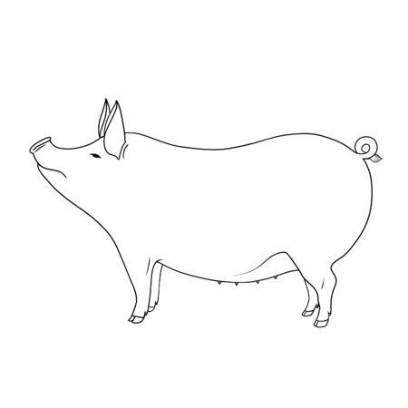 Linie Kunst Nutztier niedliche Schwein Hand gezeichnete Umrissillustration isoliert auf weißem Hintergrund. Reihe von Nutztieren. Standard-Bild
