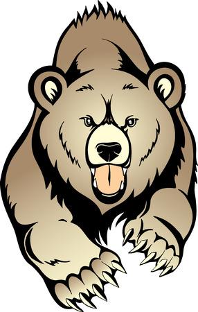 oso: Grizzly de oso pardo  Vectores