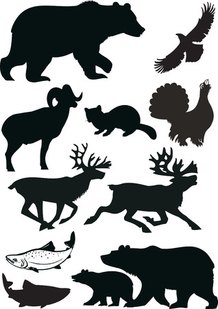 bear silhouette: Wild animals