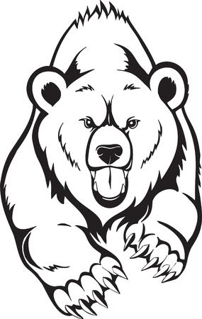 oso pardo: Grizzly de oso pardo. Vectores