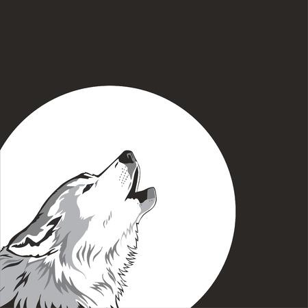lobo feroz:  El lobo y la Luna. Vector
