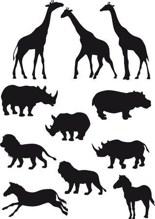 Die afrikanische Tiere. Vektor-Auflistung.