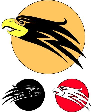 Adler-Vogel Illustration
