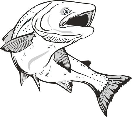 Lachs Fischen