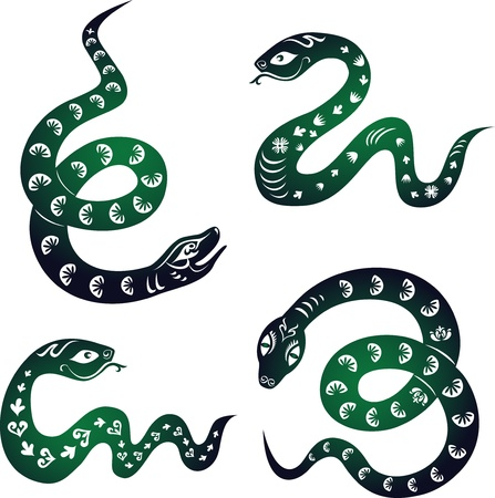 Snake set  Chinese zodiac symbol of New Year 2013  Illustration