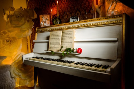 music book: red rose on piano keys and music book. Romantic atmosphere