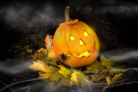 attribute: Grinning pumpkin lantern or jack-o-lantern is one of the symbols of Halloween. Halloween attribute. In the forest near the stone