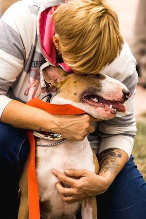 mans best friend: Woman hugging loving his dog. The dog mans best friend. Hostess with the Bull Terrier dog.