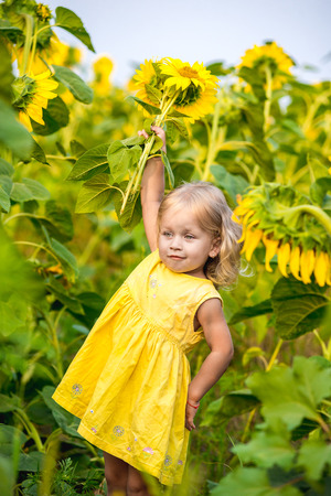 Happy little girl on the field of sunflowers in summer. beautiful little girl in sunflowers Stock Photo