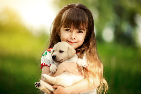 Little girl with a Golden retriever puppy. A puppy in the hands of a girl Reklamní fotografie - 74106695