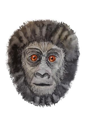 Portrait of a gorilla watercolor