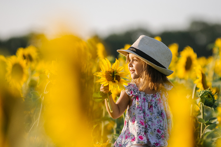 Happy little girl on the field of sunflowers in summer. beautiful little girl in sunflowers Stockfoto