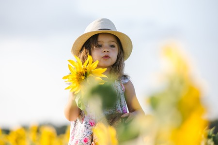Happy little girl on the field of sunflowers in summer. beautiful little girl in sunflowers Фото со стока