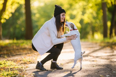 beautiful girl playing with a dog. Playing with the dog on the park. Close-up portrait. Jack Russell Terrier Stockfoto