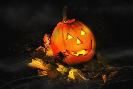 Grinning pumpkin lantern or jack-o-lantern is one of the symbols of Halloween. Halloween attribute. In the forest near the stone
