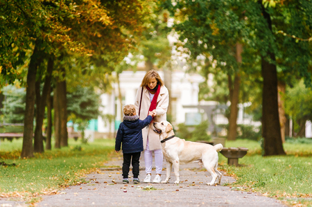 family, pet, domestic animal and people concept - happy family with labrador retriever dog walking in autumn city park Stockfoto