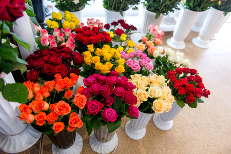 Fresh Cut Flowers And Arrangements In Florist Shop, Tracking Shot Foto de archivo - 113574264