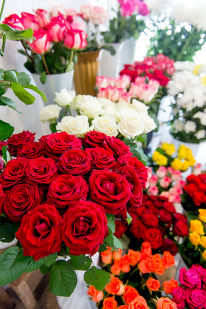 Fresh Cut Flowers And Arrangements In Florist Shop, Tracking Shot Banque d'images - 113700846