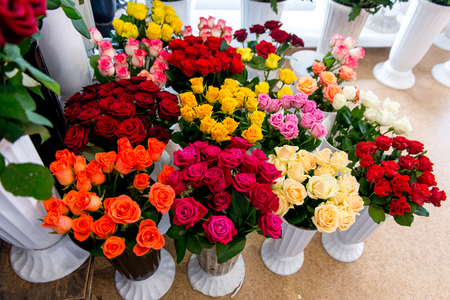 Fresh Cut Flowers And Arrangements In Florist Shop, Tracking Shot Stockfoto - 113700847