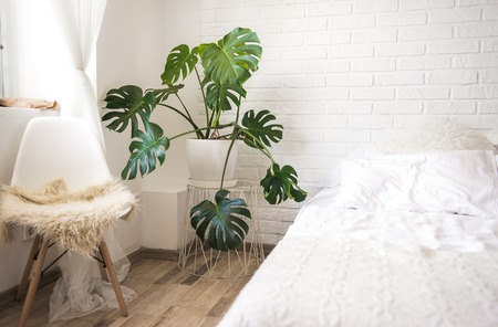 Big bright Scandinavian styled bedroom with white brick wall and wooden floor. Many plants in pots on the floor. Pink crumpled bed linen