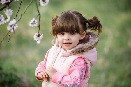 Pretty little girl in blossom apricot garden in beautiful spring day