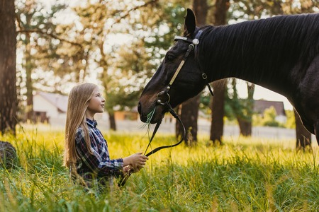 Young blonde girl stroking a brown horse. Stok Fotoğraf