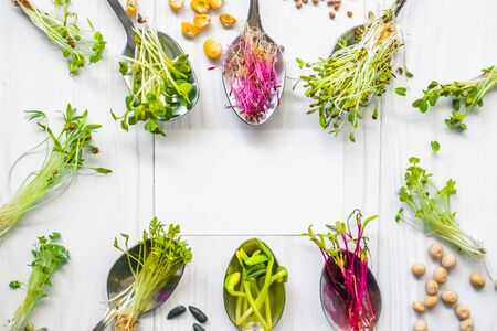Microgreen sprouts, seeds and beans lying on white background, healthy nutrition