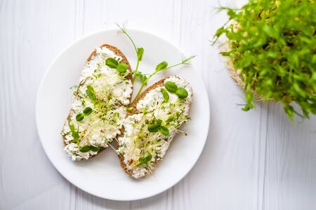 Sandwich with cottage cheese and greens sprouts lying on plate, vegetarian lifestyle Zdjęcie Seryjne