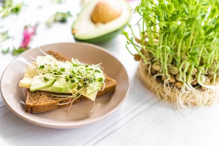 Sandwich with cheese and raw greenery in plate, healthy breakfast, dieting